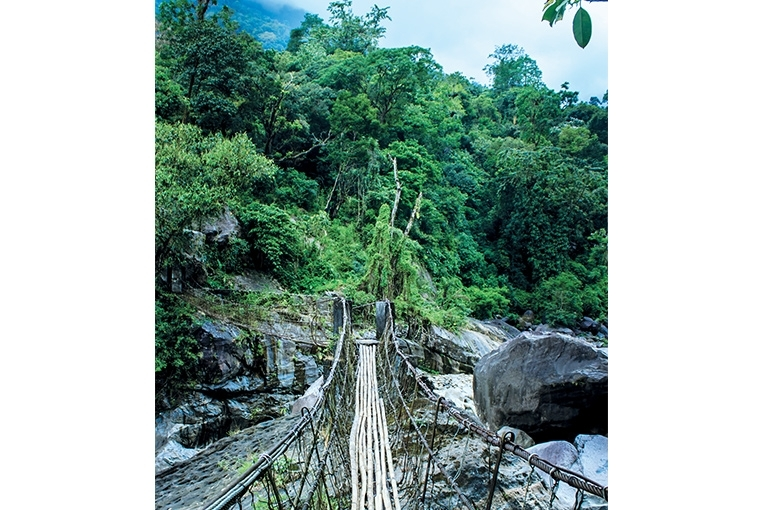 A Walk In The Clouds : Meghalaya Wire bridges marry natural with the manmade