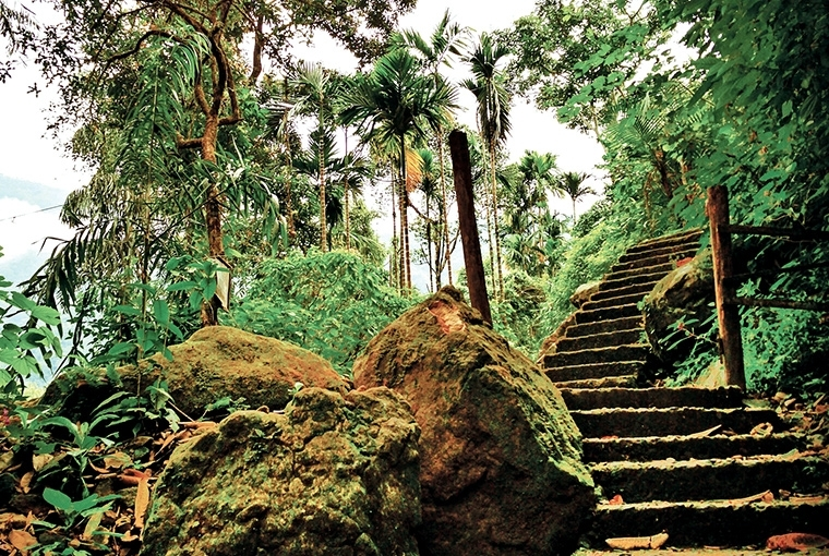 A Walk In The Clouds : Meghalaya Staircase to heaven